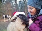 Weihnachtsbasar für den Tierschutz